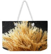 Spiral-tufted Bryozoan Weekender Tote Bag