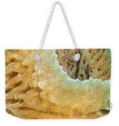 Sponge Weekender Tote Bag