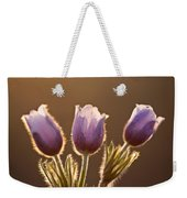 Spring Time Crocus Flower Weekender Tote Bag