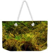 Temperate Rain Forest Weekender Tote Bag by Adam Jewell