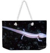 Texas Blind Salamander Eurycea Rathbuni Weekender Tote Bag