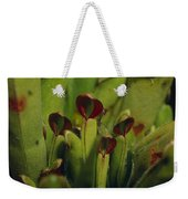 The Rare Carnivorous Sun Pitcher Plant Weekender Tote Bag
