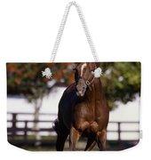 Thoroughbred Horse, Ireland Weekender Tote Bag