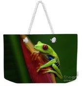 Tree Frog 19 Weekender Tote Bag