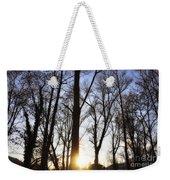 Trees With Sunlight Weekender Tote Bag