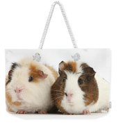 Two Guinea Pigs Weekender Tote Bag