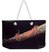 Velvet Worm Weekender Tote Bag