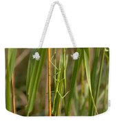 Walking Stick Insect Weekender Tote Bag by Ted Kinsman