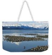 Western Sandpiper Calidris Mauri Flock Weekender Tote Bag