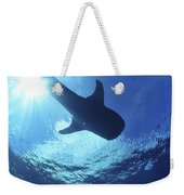 Whale Shark Near Surface With Sun Rays Weekender Tote Bag