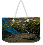 Wobbegong Shark And Cardinalfish, Byron Weekender Tote Bag