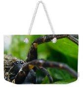 Wolf Spider And Babies 2 Weekender Tote Bag