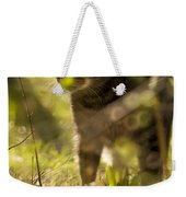 Wonky Eyed Tiger Weekender Tote Bag