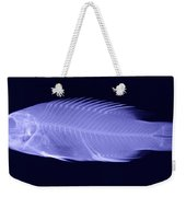 X-ray Of A Wrasse Fish Weekender Tote Bag
