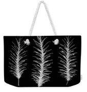 X-ray Of Pine Cones Weekender Tote Bag