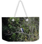Yellow-crowned Night-heron Weekender Tote Bag
