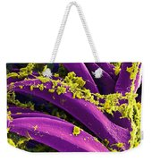 Yersinia Pestis Bacteria, Sem Weekender Tote Bag by Science Source