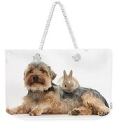 Yorkshire Terrier Dog And Baby Rabbit Weekender Tote Bag