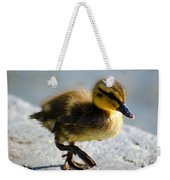 Young Duck Weekender Tote Bag