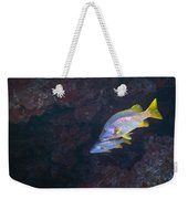 Young Woman Working In The Emergency Weekender Tote Bag by Terry Moore