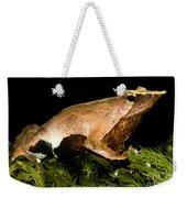 Darwins Frog Weekender Tote Bag
