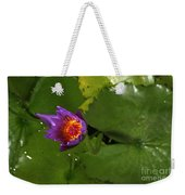Waterlily Opening Part Of A Series Weekender Tote Bag