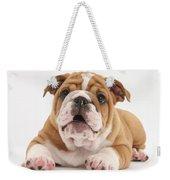 Bulldog Pup Weekender Tote Bag