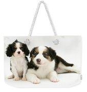Puppies Weekender Tote Bag by Jane Burton