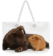 Puppy And Guinea Pig Weekender Tote Bag by Mark Taylor