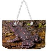 Harlequin Frog Weekender Tote Bag
