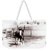 1900  Clydesdale Horse Weekender Tote Bag