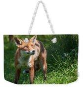 A British Red Fox Weekender Tote Bag