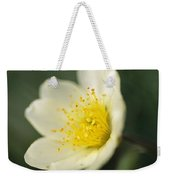A Close View Of A Wildflower In Yoho Weekender Tote Bag
