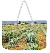 Agave Cactus Field In Mexico Weekender Tote Bag