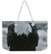 An American Bald Eagle Stands Weekender Tote Bag