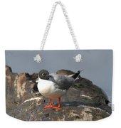 Bonaparts Gull Weekender Tote Bag