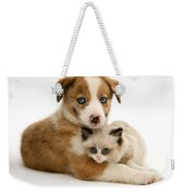 Border Collie And Birman-cross Kitten Weekender Tote Bag