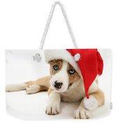 Border Collie Puppy Weekender Tote Bag by Jane Burton