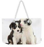 Boreder Collie Puppies Weekender Tote Bag