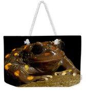 Chilean Mountains False Toad Weekender Tote Bag