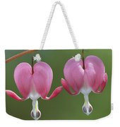 Close View Of Dutchmans Breeches, Or Weekender Tote Bag