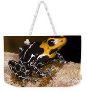 Crowned Poison Frog Weekender Tote Bag