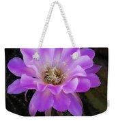 Echinopsis Aurea  Weekender Tote Bag