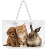 Ginger Kitten With Cavapoo Pup Weekender Tote Bag