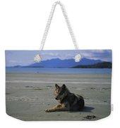 Gray Wolf On Beach Weekender Tote Bag