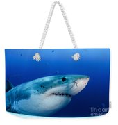 Great White Shark, Guadalupe Island Weekender Tote Bag