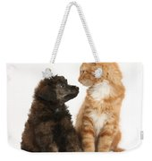 Kitten And Puppy Weekender Tote Bag