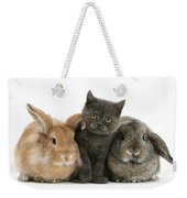 Kitten And Rabbits Weekender Tote Bag