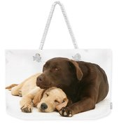 Labradoodle And Labrador Retriever Weekender Tote Bag
