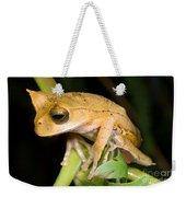 Marsupial Frog Weekender Tote Bag